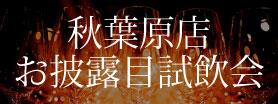THE CELLAR 秋葉原お披露目試飲会