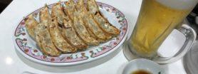 Gyoza dinner